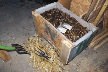 Mushroom grow box.