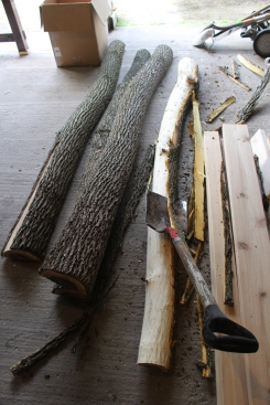 Peeling the bark with a shovel.