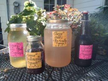 Stored Cordials