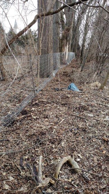 Chicken fence.