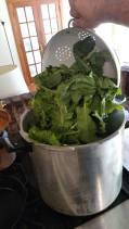 Dump a batch of greens.