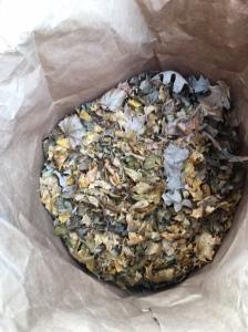 Image3 bag leaves